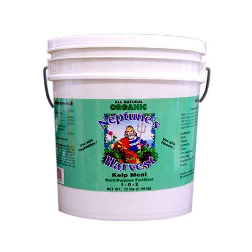 neptunes-harvest-fertilizers-kelp-meal-green-labsel-12-lbs