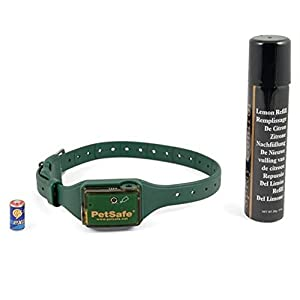 Big Dog Spray Bark Control, Comfort Fit