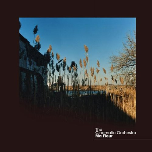 Cinematic Orchestra - That Home