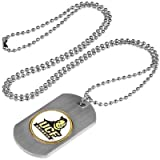 Central Florida Knights Dog Tag Necklace