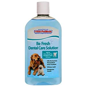 Be Fresh Dental Care Solution 18oz