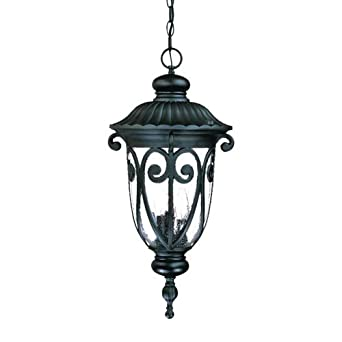 Alico Lighting 2126BK Acclaim Lighting Matte Black Finished Outdoor Pendant with Clear Seeded Glass Shades
