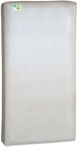 Sealy Soybean Everedge Mattress - 1