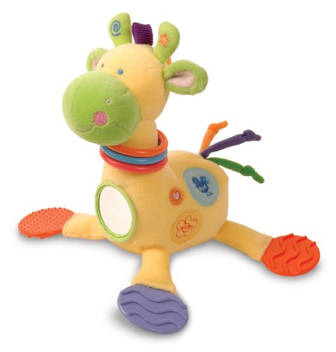 Healthy Baby: Asthma and Allergy Friendly Developmental Giraffe by Kids Preferred - 1