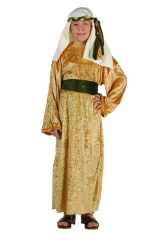 RG Costumes 90281-L Wiseman Costume - Size Child Large 12-14