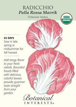 Nutrition Of Lettuce