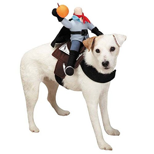 [Defonia Zack & Zoey HEADLESS HORSEMAN Pet Dog Halloween Costume S - XL ADORABLE!] (Large Dog Spider Halloween Costume)