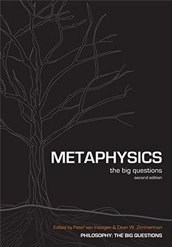 Metaphysics: The Big Questions