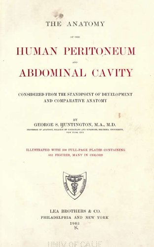 The Anatomy of the Human Peritoneum and Abdominal Cavity