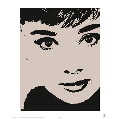 "Amazon.com: LAMINATED Audrey Hepburn Stencil 20"" x 16"" (50 x 40cm"