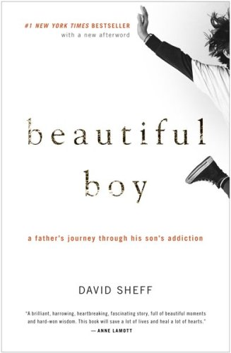 Cover of Beautiful Boy: A Father's Journey Through His Son's Addiction