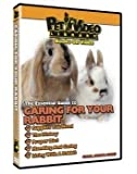 Caring For Your Small Pet DVD Rabbit by PET VIDEO LIBRARY
