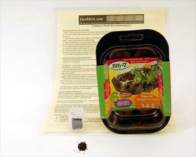 Buy Catnip Mini Herb Garden Kit – Includes Everything You Need To Grow Catnip Herbs – Your Pets, Cats & Kittens Will Love It! Includes: Cat Nip Seed, Instructions, Mini Growing Dome & Seed Starter Peat Pellets. A Fun & Easy Kit for Growing Catnip For Your Cat Or Kitten