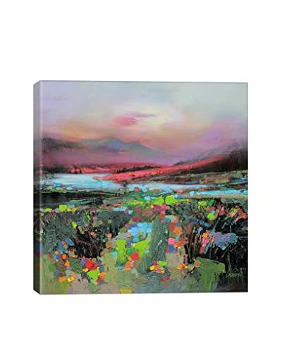 Scott Naismith Highland Colour Gallery-Wrapped Canvas Print