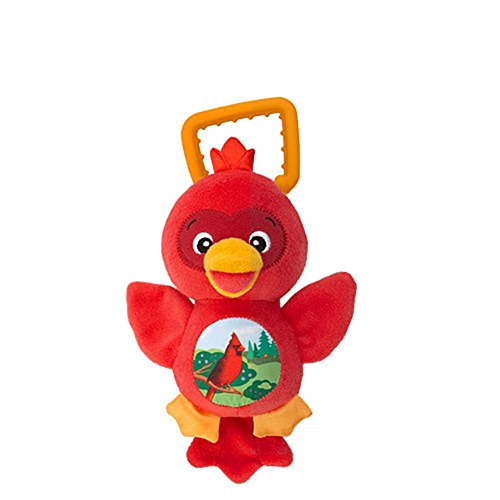 Baby Einstein Sing & Play Songbirds - Red Cardinal, 0+m - 1