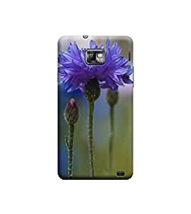 EPICCASE Premium Printed Mobile Back Case Cover With Full protection For Samsung Galaxy S2 I9100/9108 (Designer Case)