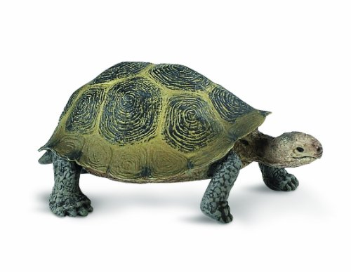 Safari Ltd Wild Safari North American Wildlife - Desert Tortoise - Realistic Hand Painted Toy Figurine Model - Quality Construction From Safe and BPA Free Materials - For Ages 3 and Up