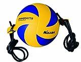 ミカサ バレーボール トレーニングボール4号 アタック練習用 中学校/家庭婦人用 MVA400ATTR