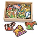 20 Animal Magnets in a Box
