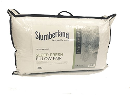 slumberland-boutique-collection-sleep-fresh-anti-allergy-pillow-pair