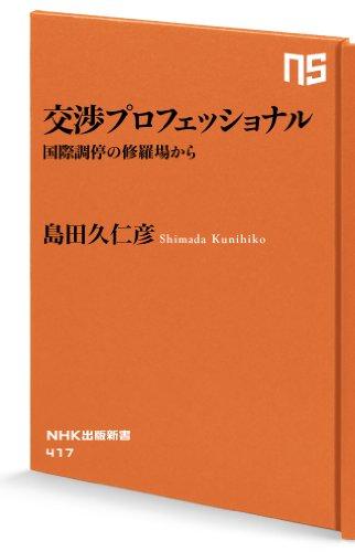 交渉プロフェッショナル 国際調停の修羅場から (NHK出版新書)