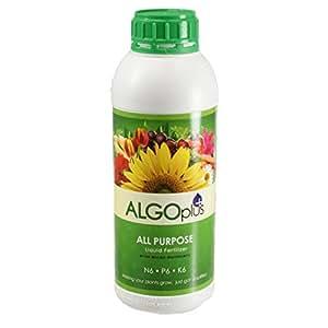 Algoflash All Purpose Formula