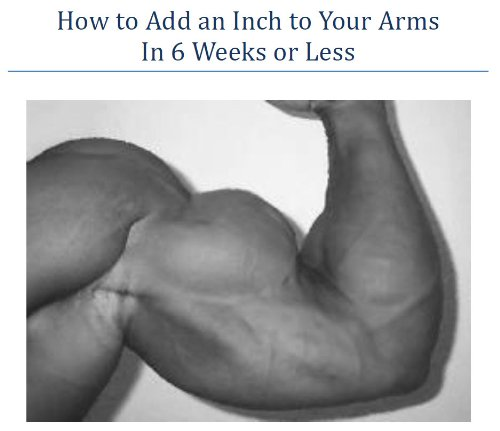 How to Add an Inch to Your Arms In 6 Weeks or Less