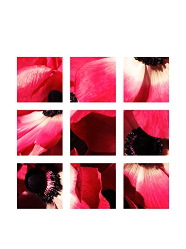 Art Addiction Pink Floral Set of 9, Multi, 15.75