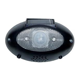 Sale Lighting Ceiling Fans HomeBrite EW 1 EyeWatch