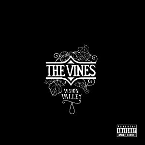 The Vines Vision Valley Amazon Com Music