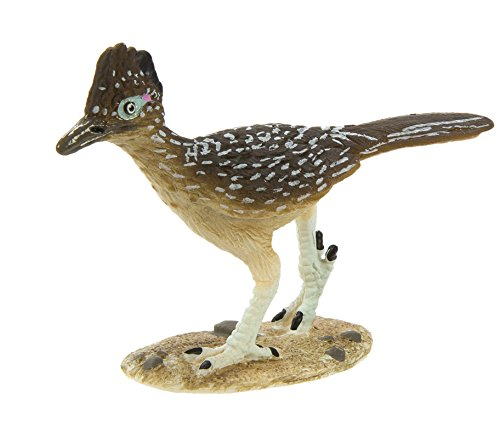 Safari Ltd Wild Safari North American Wildlife - Greater Roadrunner - Educational Hand Painted Figurine - Quality Construction from Safe and BPA Free Materials - For Ages 3 and Up