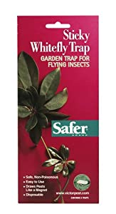 Safer Brand 00340 Sticky Whitefly Trap