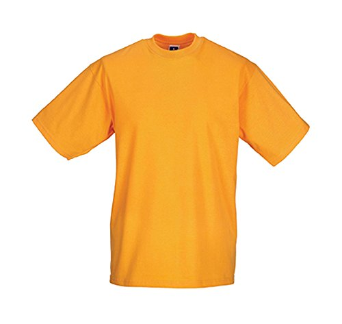 russell-collection-klassisches-t-shirt-r-180m-0-lpure-gold
