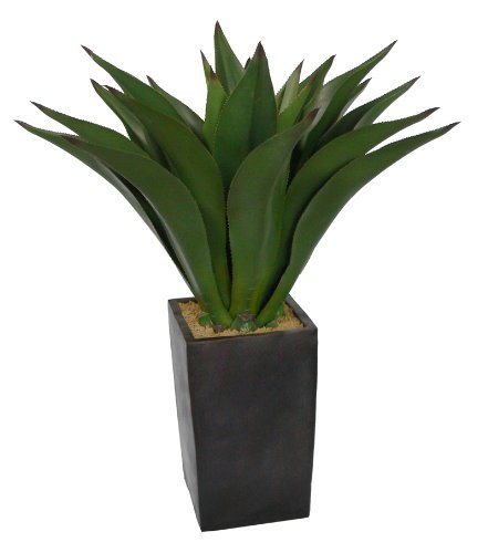 Laura Ashley Eco-Friendly Realistic Giant Aloe Plant in Contemporary Planter, 44-Inch Tall