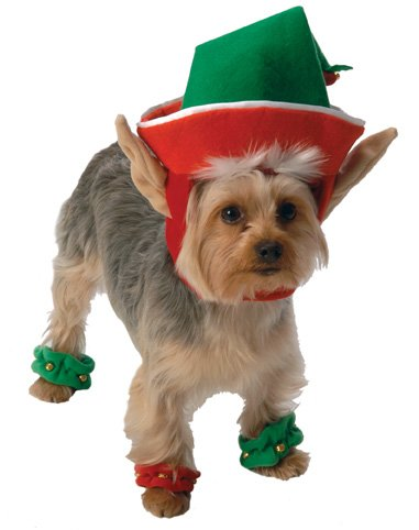 [Go Dog Holiday Elf Dog Costume - XLarge] (Quaker Costumes)