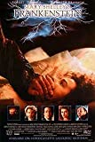 MARY SHELLEY'S FRANKENSTEIN (Single Sided Video) Poster (Aidan Quinn, Ian Holm, Robert De Niro) ORIGINAL VIDEO/DVD AD POSTER