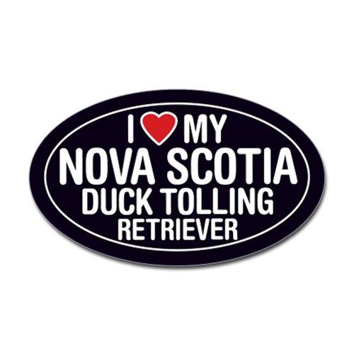 CafePress Nova Scotia Duck Tolling Retriever Sticker/Decal Sticker Oval - 3x5