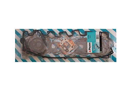 PAYEN GV250 Jeu complet de joints d'étanchéité, moteur