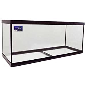 Deep Blue Professional ADB11075 75-Gallon Aquarium Glass Tank, 48 by 18 by 20-Inch, Black