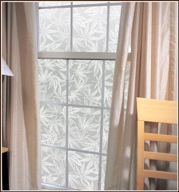 Amsterdam Marijuana Leaf Privacy Etched Glass Window Film