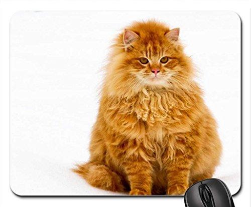 Cute Plump Cat Mouse Pad, Mousepad (Cats Mouse Pad)