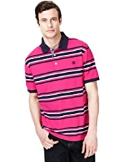 XXXL Blue Harbour Pure Cotton Graded Striped Polo Shirt
