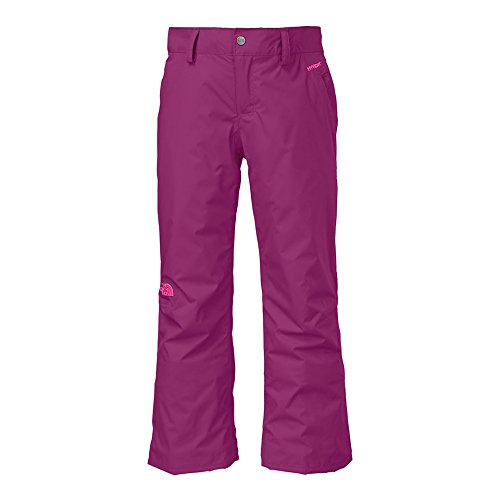 The North Face Derby Insulated Pant Girl'S Parlour Purple L