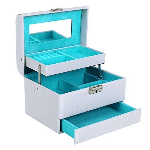 Songmics Coffret Boîte à Bijoux Présentoirs Beauty Case Violet JBC134W