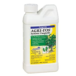 Fungicide Systemic