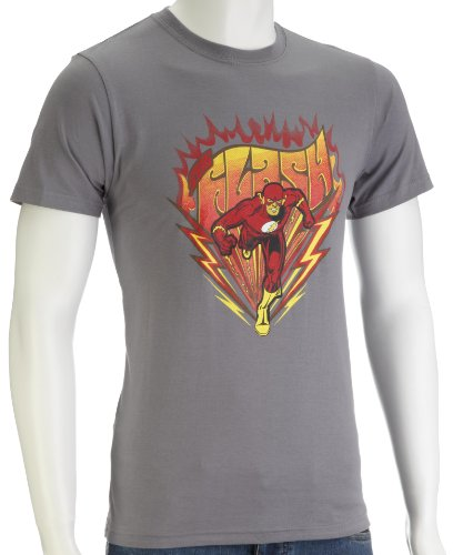 DC Comics Flash Sprint Men's T-Shirt Grey DC014GS Small