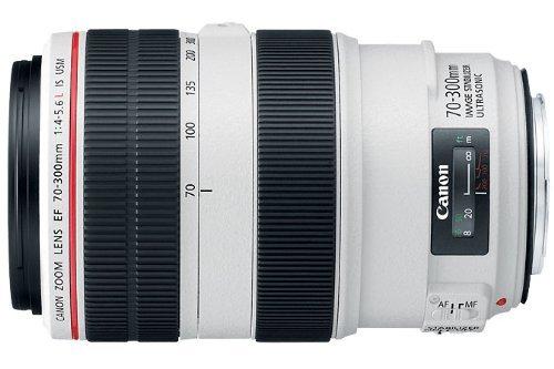 Canon EFレンズ EF70-300mm F4-5.6L IS USM ズームレンズ 望遠