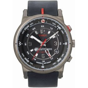 Timex Men's T49211 Expedition E-Instruments E-Compass Titanium Watch