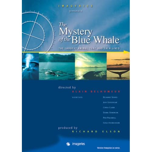 The Mystery of the Blue Whale /  (2007)