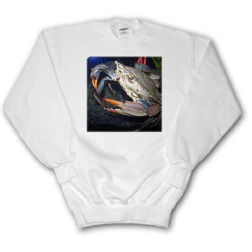 crab - Adult SweatShirt 2XL